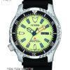 Đồng hồ CITIZEN NY0080-12X